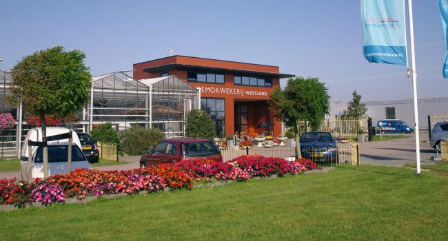 Afb. 4 In 2012 is Demokwekerij Westland onderdeel geworden van Vertify.