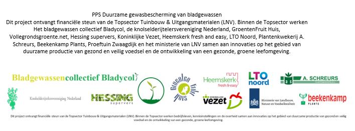 Logobalk TKI bladgewassen